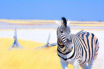 Etende Zebra von Ger&Wil van de Bovenkamp