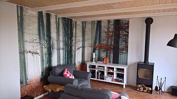 Kundenfoto: Nebliger Wald mit rotem Herbstlaub von Rob Visser