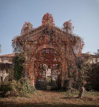 Willkommen zu Hause von Olivier Van Cauwelaert