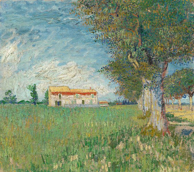 Vincent van Gogh, Boerderij in het koren van 1000 Schilderijen