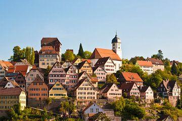 Altensteig im Schwarzwald von Werner Dieterich