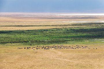 Weitläufige Landschaft des Ngorongoro in Tansania. von Diane Bonnes