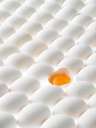 Viele liegende weisse Eier, eines geöffnet