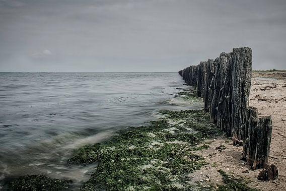 Waddenzee #3 van Ruud van Oeffelen-Brosens