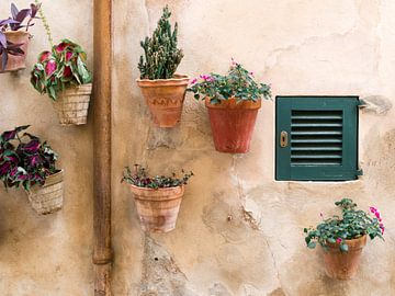 Pots de fleurs contre le mur à Valldemossa sur Evelien Oerlemans