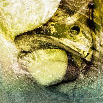 Fantasie vis van Maura Klumper