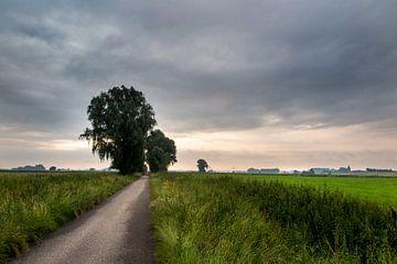 Landschap in de uiterwaarden von Ger Loeffen