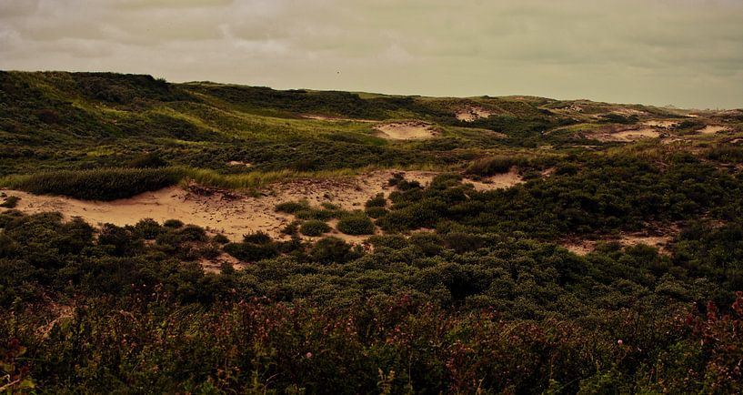 Met zand tussen je tenen van Tessa Wiegerinck