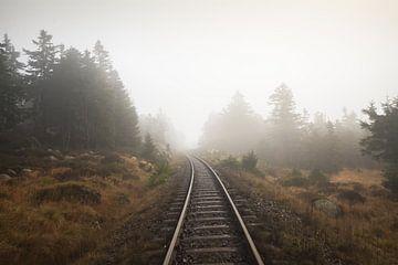 Nebel von Alena Holtz