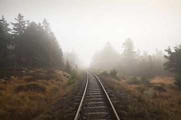 Nebel sur Alena Holtz
