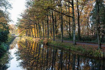 Herbst Landschaftsbäume entlang des Grabens bei tiefstehender Sonne von Ger Beekes