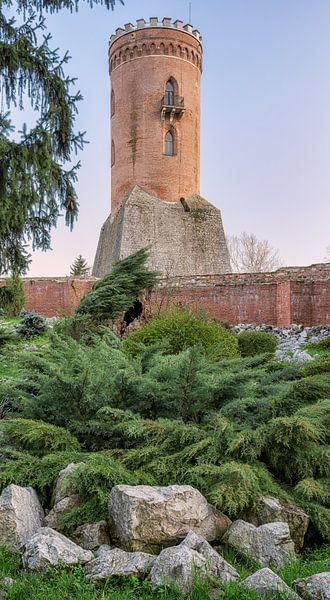 Castle in Romania van Lorena Cirstea