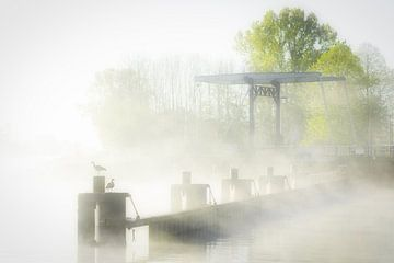 Nebel über dem Van Starkenborg-Kanal in Groningen an einem schönen Frühlingsmorgen im Mai von Bas Meelker