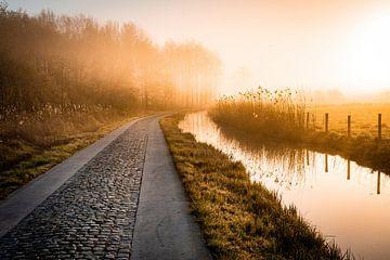 Sentier dans le polder