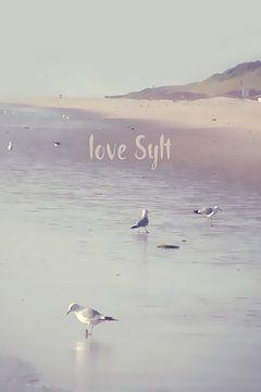 LOVE SYLT I van Pia Schneider