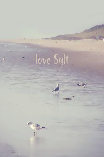 LOVE SYLT I