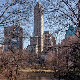 Zicht op 5th Avenue vanuit het Central Park, NYC van Wijbe Visser