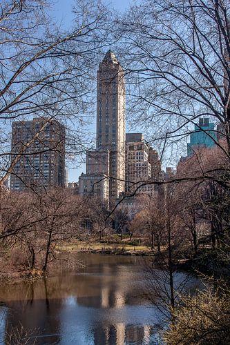 Zicht op 5th Avenue vanuit het Central Park, NYC