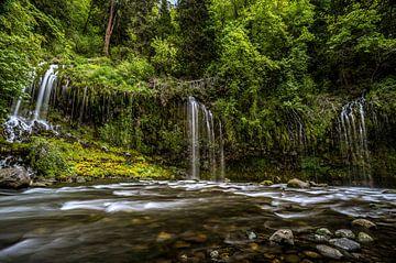 Rivière Sacramento sur Joris Pannemans - Loris Photography
