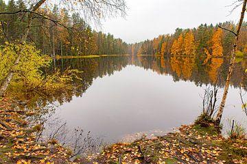 Landschap in herfst met meer en bos in Finland van Ben Schonewille