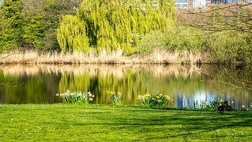 Amstel Park in der Morgensonne von Jaap Mulder