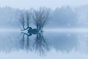 Eilandje in een stil winterlandschap van Arjan Almekinders