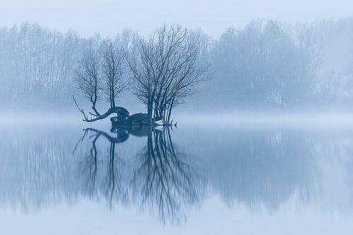 Eilandje in een stil winterlandschap