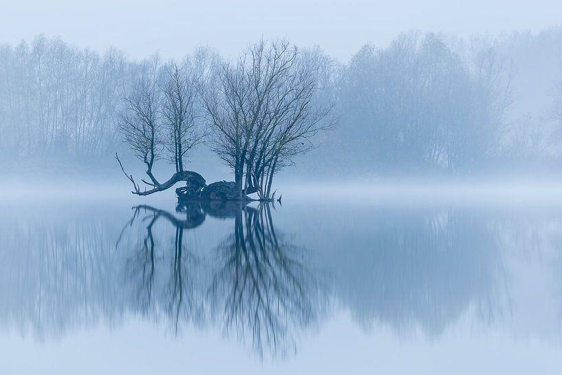 Insel in einer ruhigen Winterlandschaft von Arjan Almekinders