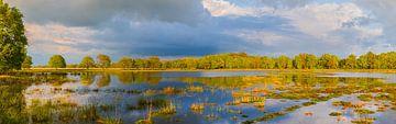 Panorama van  Nationaal Park het Dwingelderveld