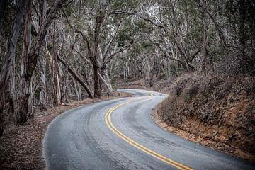 Winding Road von