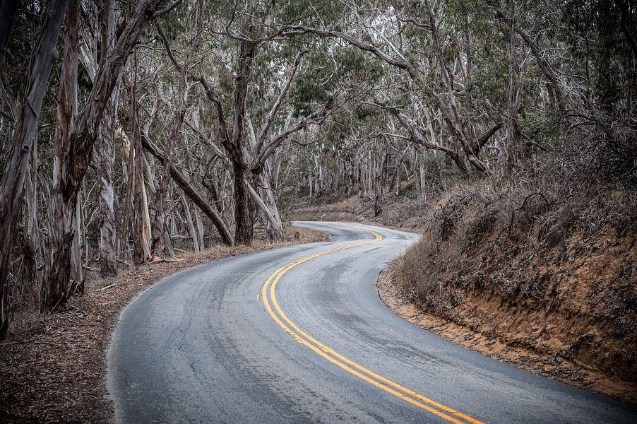 Winding Road van Wim Slootweg