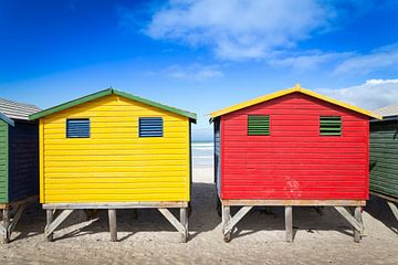 Beach Huts van