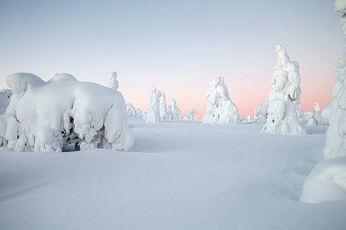 Winters landschap in Finland van
