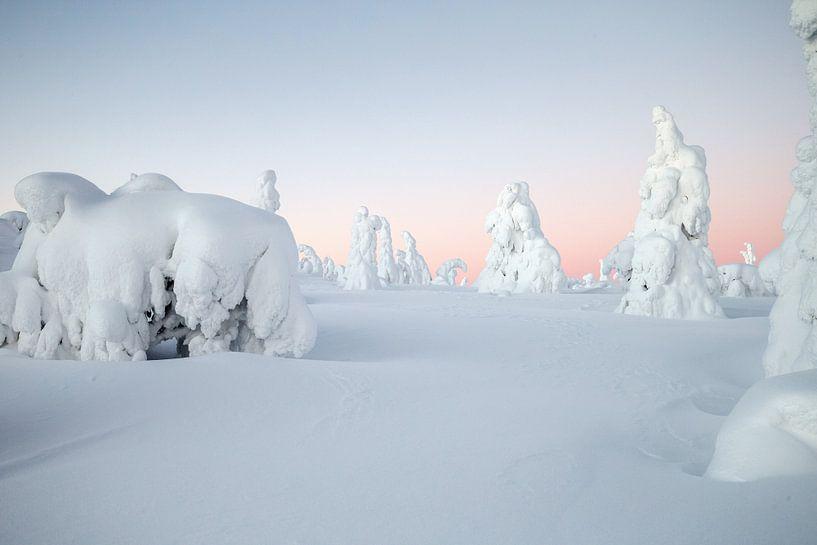 Winters landschap in Finland van Menno Schaefer