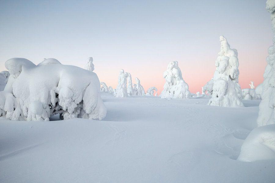 Winters landschap in Finland