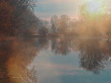 Een zonnige morgen van Joey Hohage