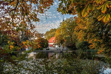 Vijver in Fallersleben / Wolfsburg in de herfst van Marc-Sven Kirsch