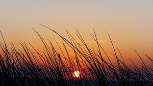 De zonsondergang boven zee gezien door het helmgras bovenop het duin
