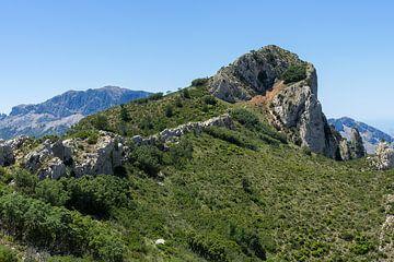 De groene vlakte en de klim naar de top van Montepuro