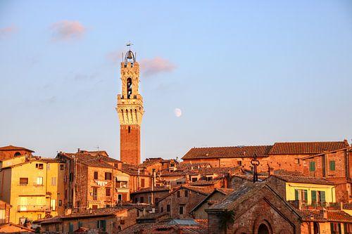Kloktoren van Siena in Avondlicht