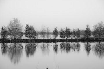 Veendammen in zwartwit von Wim de Lange