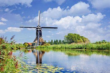 Scène avec un canal avec une végétation luxuriante et ancien moulin à vent sur Tony Vingerhoets