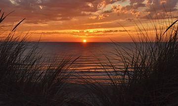 Sonnenuntergang vom Dünengras von Texel aus von Egbert van Ede