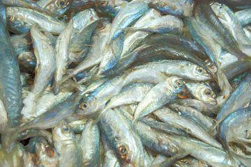 Vismarkt van Leo Luijten