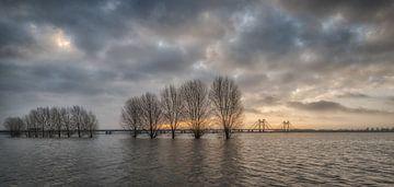 Hoogwater bij Prins Willem Alexanderbrug in Echteld van Moetwil en van Dijk - Fotografie