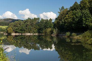 Diemelsee met bomen in het water, Duitsland