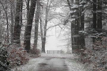 Ende der Straße von Paul Muntel