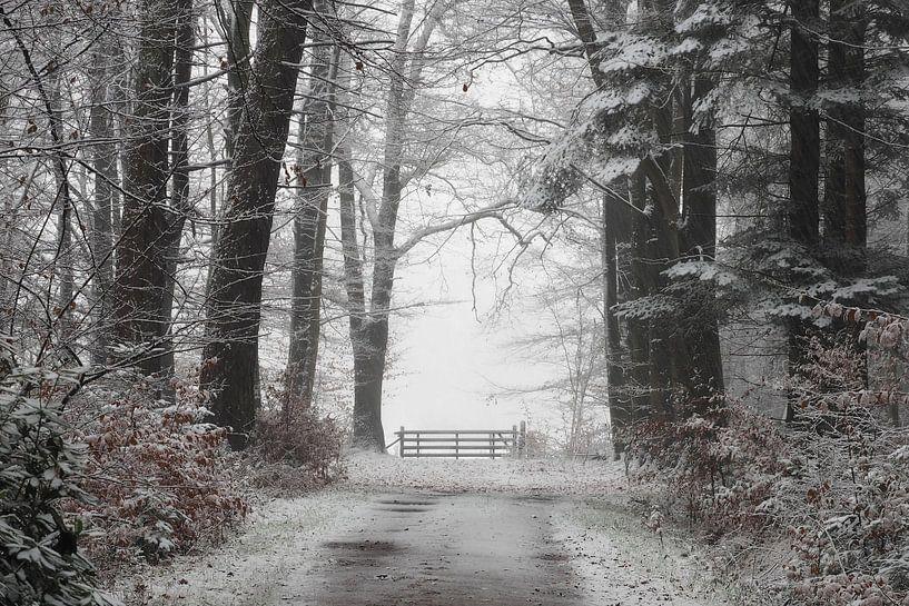 Einde van het pad van Paul Muntel