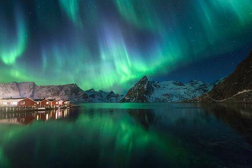 Noorderlicht in Hamnoy (Lofoten). van