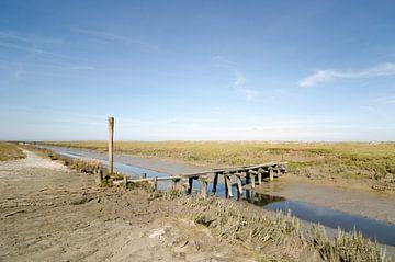 oude en vervallen spoor brug in buitendijks Friesland von Tjiske Regnerus